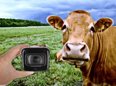 Montaż kamer do monitoringu gospodarstwa rolnego to inwestycja która szybko się zwraca... Kamery do monitoringu zwierząt jak również gospodarstwa rolnego...